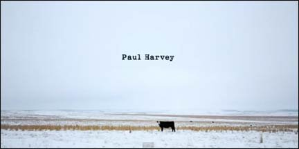 paul harvey cow
