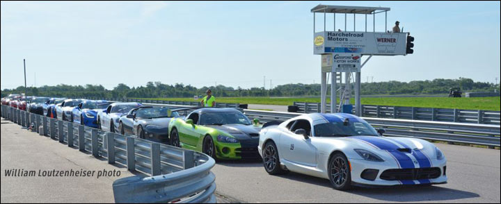 line of vipers